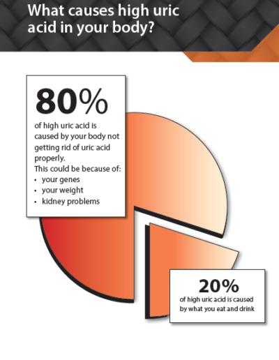 4 - Stop gout brochure 2017